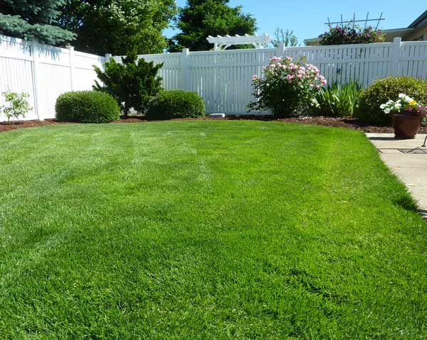Lush, green, trimmed lawn